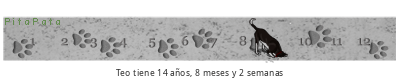 PitaPata tickers perro